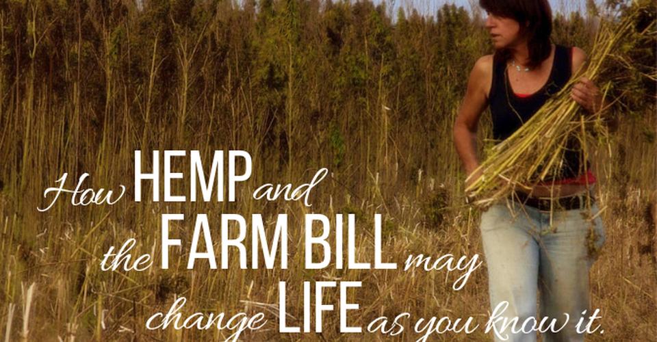 Hemp and the FarmBill